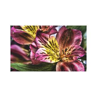 Impresión de la lona de la flor del lirio peruano  impresión en lona