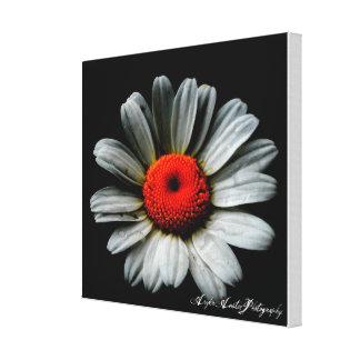 Impresión de la lona de la flor impresión en lona