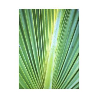 Impresión de la lona de la hoja de la palmera impresiones en lienzo estiradas