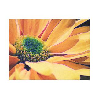 Impresión de la lona de la margarita anaranjada impresión en tela