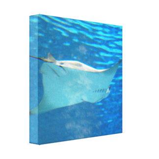 Impresión de la lona de la natación de la pastinac lona envuelta para galerias