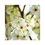 Impresión de la lona de la primavera impresiones en lona estiradas
