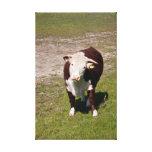 Impresión de la lona de la vaca lienzo envuelto para galerías