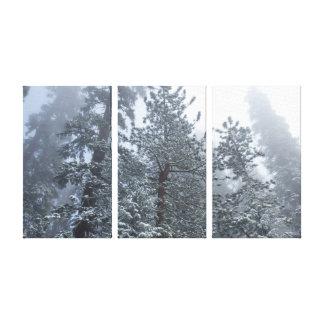 Impresión de la lona de los árboles del invierno impresiones de lienzo