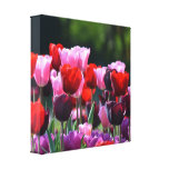 Impresión de la lona de los tulipanes