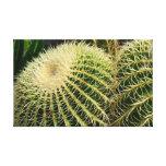 Impresión de la lona del cactus impresion en lona