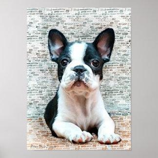 Impresión de la lona del dogo francés póster