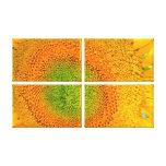 Impresión de la lona del girasol impresion de lienzo