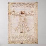 Impresión de la lona del hombre de Vitruvian Posters