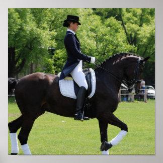 Impresión de la lona del jinete del caballo del Dr