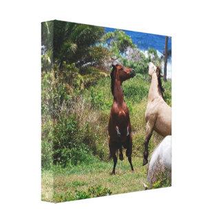 Impresión de la lona del juego del caballo impresiones en lona estiradas