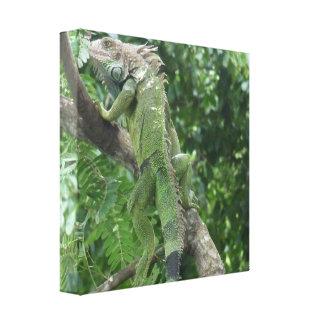 Impresión de la lona del lagarto que sube lona envuelta para galerias