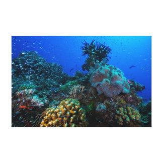 Impresión de la lona del mar de coral impresiones en lienzo estiradas