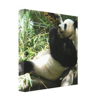 Impresión de la lona del oso de panda gigante impresion en lona