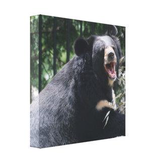 Impresión de la lona del oso el gruñir impresiones en lienzo estiradas