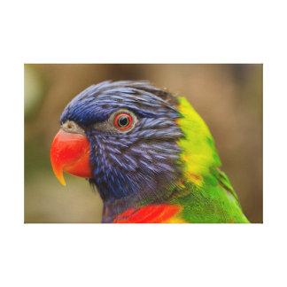 Impresión de la lona del pájaro de la naturaleza