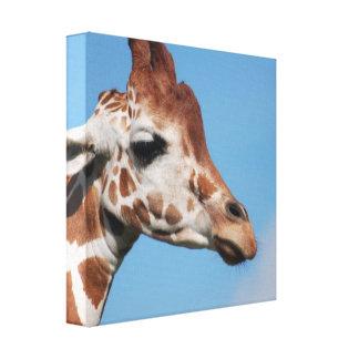 Impresión de la lona del perfil de la jirafa impresiones en lienzo estiradas