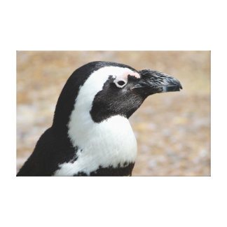 Impresión de la lona del perfil del pingüino impresión en lienzo estirada