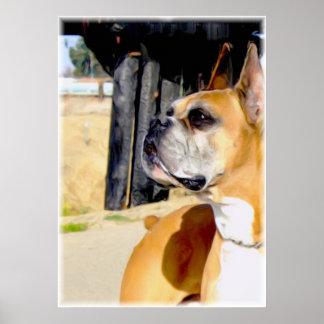 Impresión de la lona del perro del boxeador del ce posters