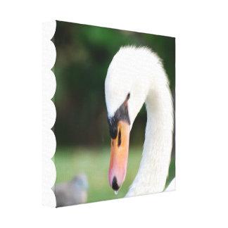 Impresión de la lona del pico del cisne impresión en lona