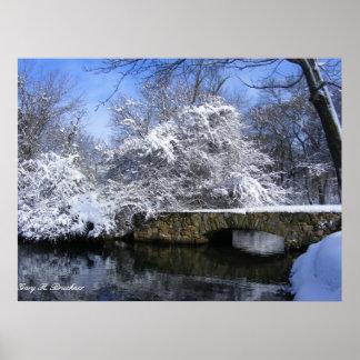 Impresión de la lona del puente de la nieve póster