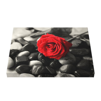 Impresión de la lona del rosa rojo