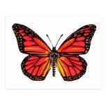 Impresión de la mariposa del vintage tarjetas postales