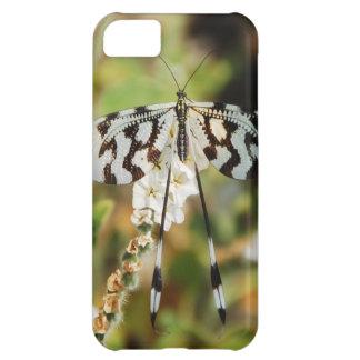 Impresión de la mariposa funda para iPhone 5C