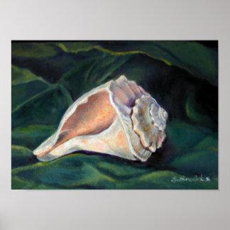 Impresión de la pared de la concha del Seashell Posters