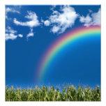 Impresión de la pared del arco iris del verano cojinete
