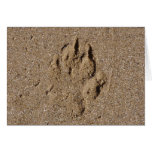 Impresión de la pata del perro en arena felicitacion