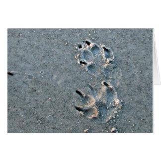 Impresión de la pata del perro tarjeta pequeña