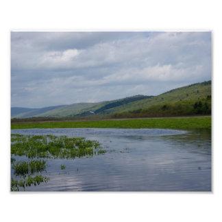 Impresión de la paz 10x8 Photograhic de las natura Cojinete
