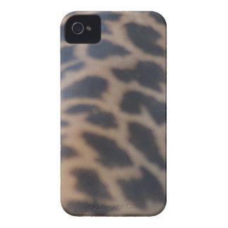 impresión de la piel de la jirafa del masai iPhone 4 cobertura