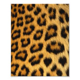 Impresión de la piel del leopardo fotografia