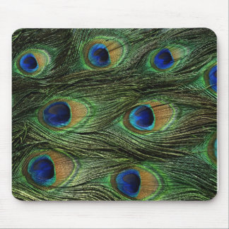 Impresión de la pluma del pavo real mousepads