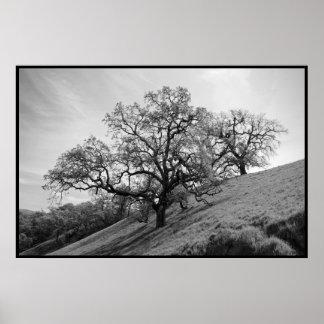 Impresión de la poesía del árbol póster