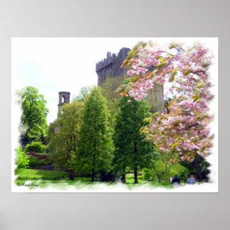 Impresión de la primavera del castillo de la lison posters