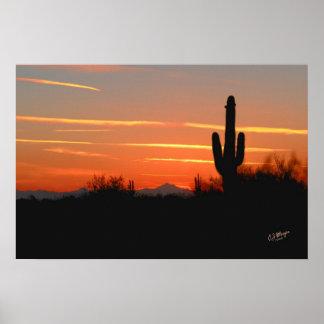 Impresión de la puesta del sol del cactus poster
