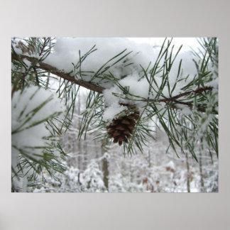 Impresión de la rama del pino Nevado Impresiones