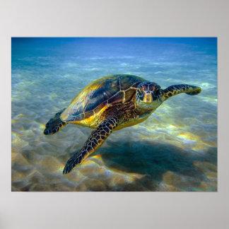 Impresión de la tortuga de mar de Leatherneck Póster
