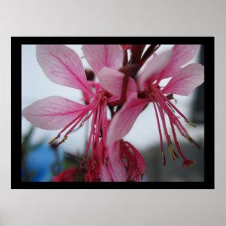 Impresión de las flores de la pinta póster