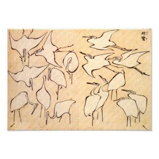 Impresión de las grúas de Hokusai Foto