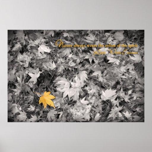 Impresión de las hojas de la caída posters