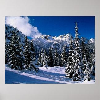 Impresión de las montañas del invierno de la escen póster