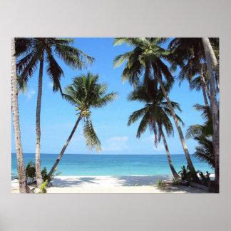 Impresión de las palmeras del océano póster