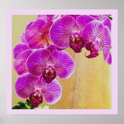 Impresión de las promesas de la orquídea poster