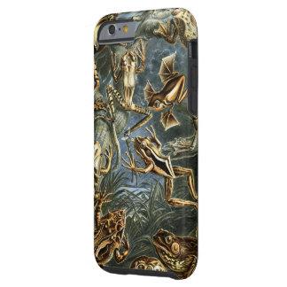 Impresión de las ranas de Ernesto Haeckel del Funda De iPhone 6 Tough