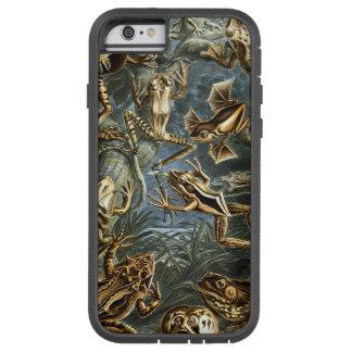 Impresión de las ranas de Ernesto Haeckel del Funda De iPhone 6 Tough Xtreme