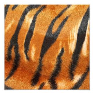 Impresión de las rayas del tigre del safari fotografías